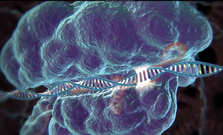 IS CRISPR THE FUTURE AND SHOULD YOU INVEST?