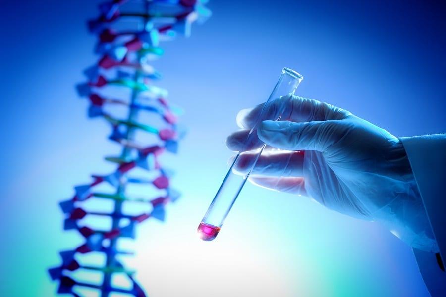 Best DNA Testing Kit