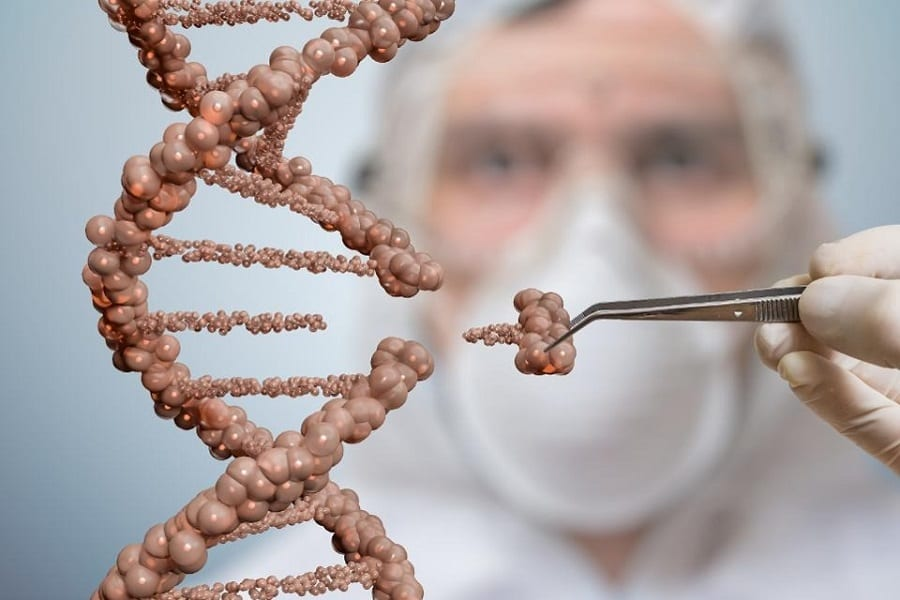 Biotech Vs. Bioengineering: What's The Difference?